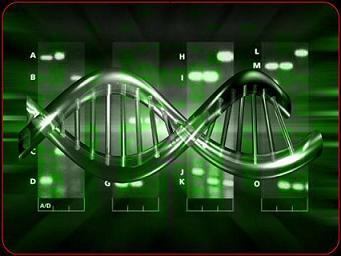 genoma-humano