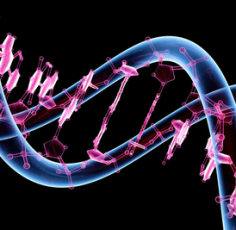 Genetics_wallp_Tw