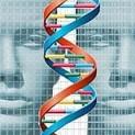 genes del rostro