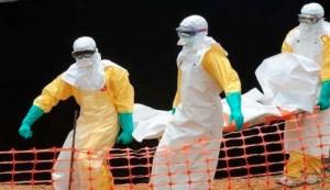 brote-ebola