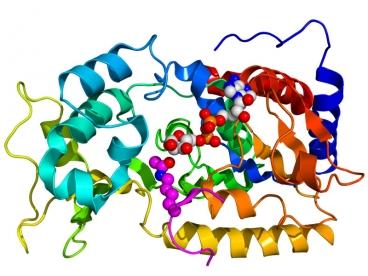 proteinas-2