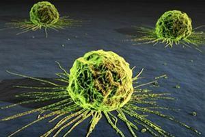 celula-tumor