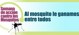 mosquitos-semana-2016
