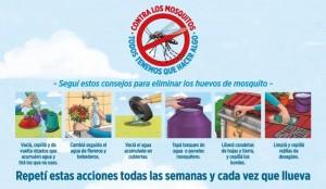semanas-accion-mosquitos