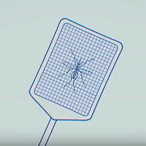 cartoon-network-zika-300px