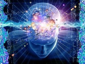 cerebro-21-300x225