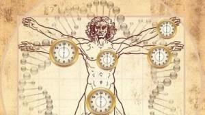 relojbiologico
