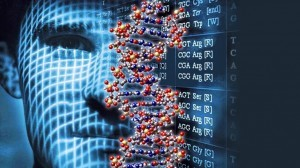 genoma-computadora