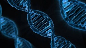 DNA-kQuH--1240x698@abc