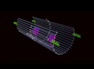 Salud. Nanorobots buscan y destruyen tumores. Universidad del Estado de Arizona