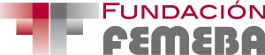 fundFEM