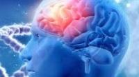 cerebro-glucosa