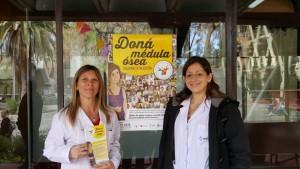 donamedulaosea